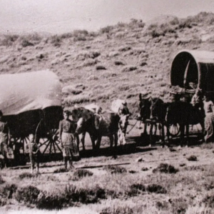 Covered-Wagons